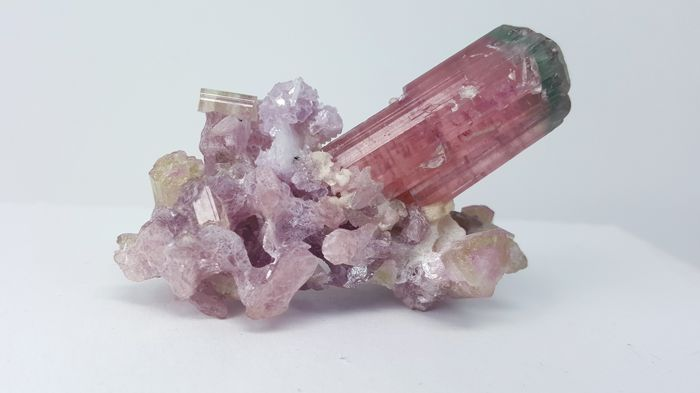 Multicolor Tourmaline combine with lepidolite - 3 cm - 47 gm