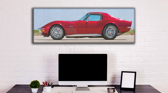 SLQ-Wall paint on Plastic Canvas - Corvette StingRay