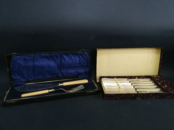 Set of Aefa stainless steel and silver-plated knives, with box of silver-plated dessert cutlery