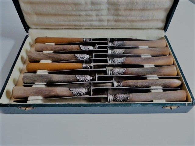 A beautiful case with 12 knives - with horn hilts caught in silver starter piece and blades, marked Paris - ca 1900 - France