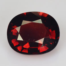 Tourmaline - Deep Brown - 1.66 ct - No Reserve