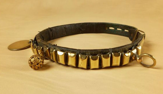 Dog collar in leather and brass (for small dogs) - France - second half of the 19th century