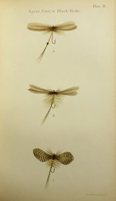 Frederic M. Halford - Floating Flies and How To Dress Them - 1886