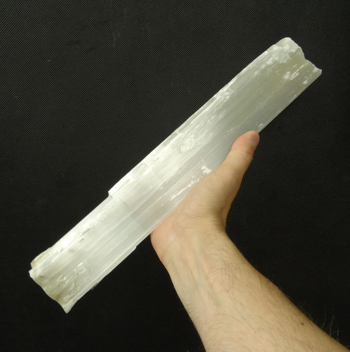 Selenite (var. Gypsum) - Giant crystal  - 35,5 x 5,5 x 5,5 cm - 2177 gm