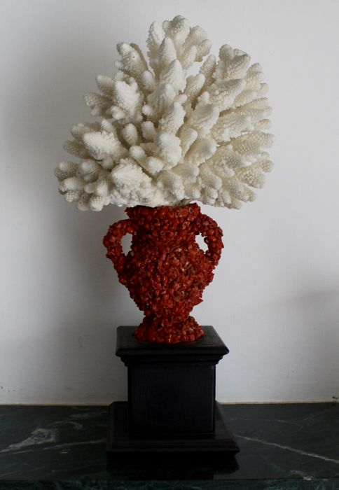 Large White Branch Coral on vase decorated with Red Coral fragments - Acroporidae sp. with Corallium rubrum - 42cm