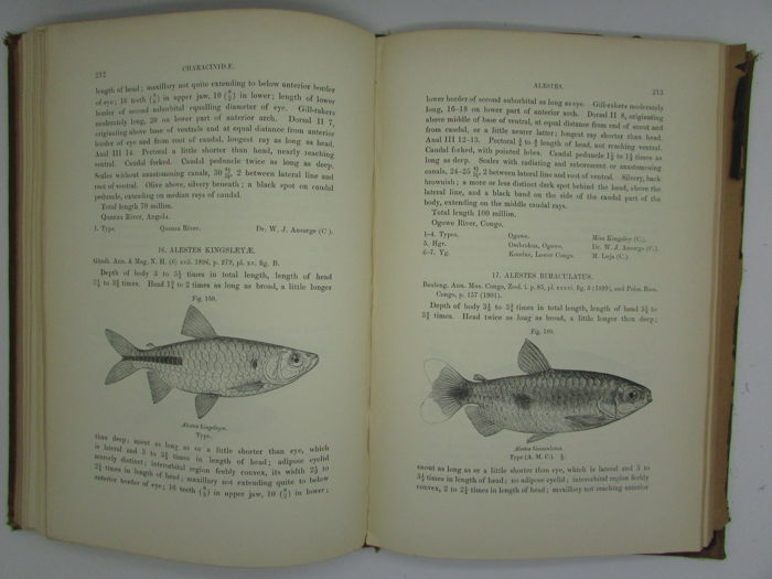 George Albert Boulenger - Catalogue of the Fresh-Water Fishes of Africa  - 1909/1916