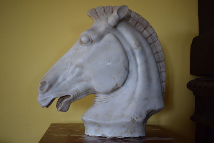 Horse's head in Carrara marble - Italy - 20th century