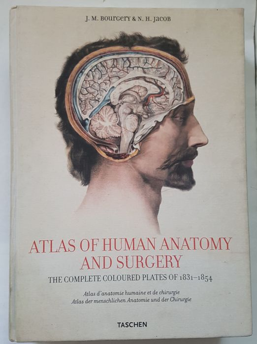 J.M. Bourgery & N.H. Jacob - Atlas of Human Anatomy and Surgery ...
