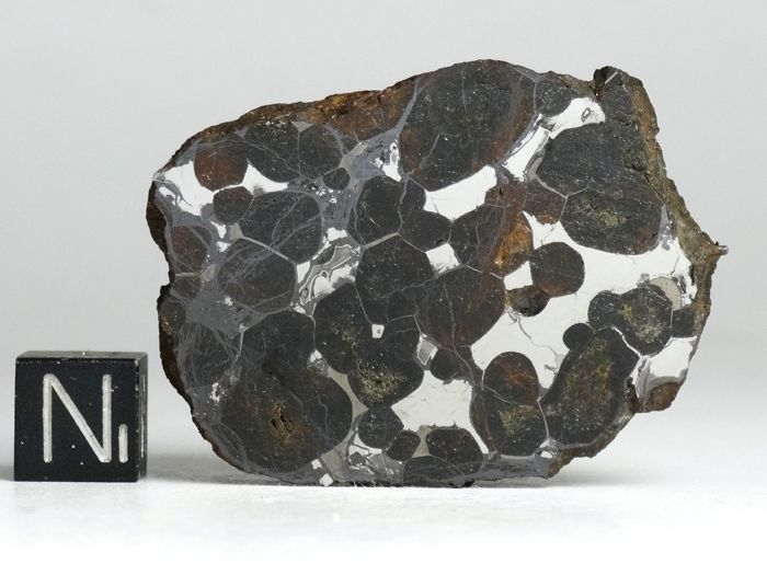 Meteorite Pallasite Sericho (Habaswein) Polished Endcut 51,4gr