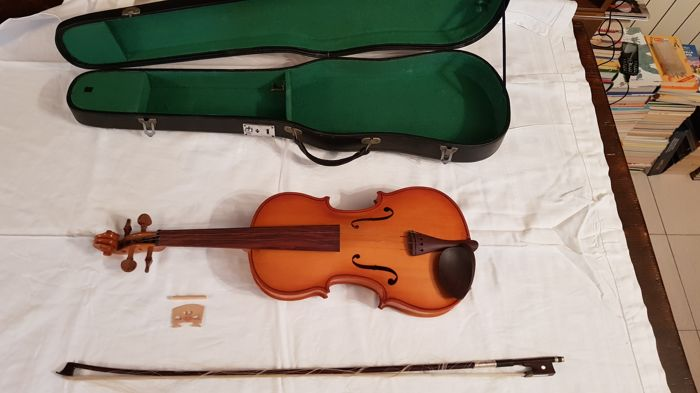 Chinese violin Parrot Mus - 1414-1 - with bow and case