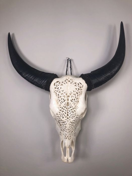 Hand Carved Water Buffalo Skull With Lotus Flower Motif Bubalus
