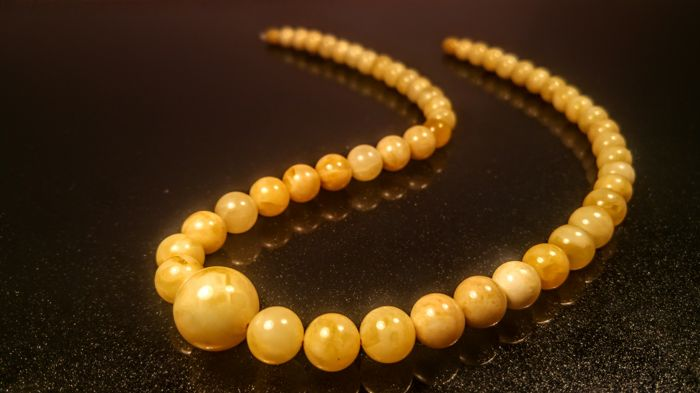 White- Egg yolk colour Baltic Amber (modified) necklace, length 54 cm, 35 grams