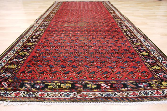 Antique Kazak gallery, Caucasus - 305 x 125 cm -