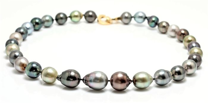 Lustrous Multi Colour Tahitian Pearl Necklace 11.2x13.7 mm Completed with an 18K Yellow Gold Design Clasp