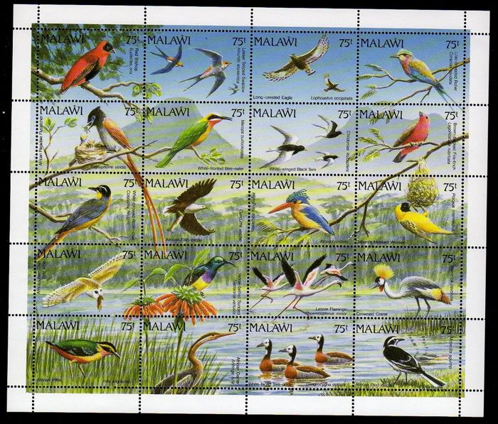 World - Bird collection, stamps and blocks