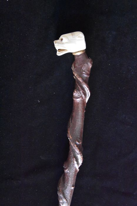 Walking stick with a jaguar head - topped by a resin animal head - folk art - early 20th century - Italy