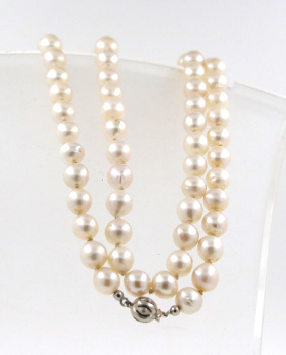14 kt white gold clasp pearl necklace with cultured salt water Akoya pearls - length: 64 cm