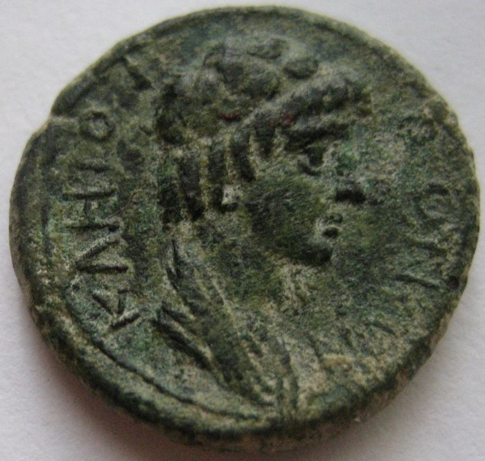 "Grecia (antica) - Lot of 2 AE coins: Mysia, Pergamum, Æ 16 ""Senate"" & Ptolemaic Kingdom, Æ 17"
