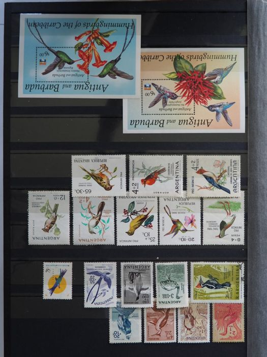 World collection themed stamps birds