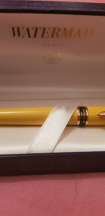 Watterman Paris fountain pen