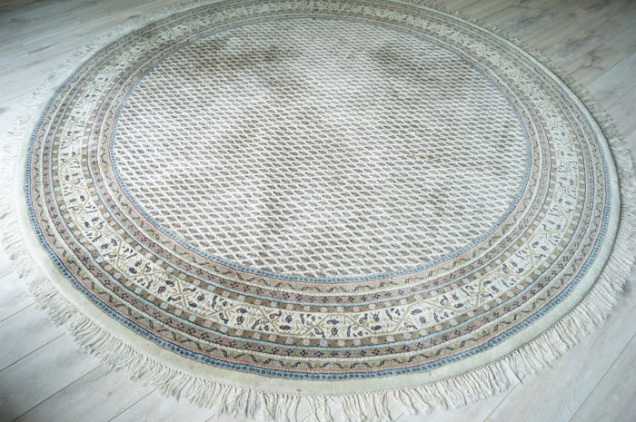 Hand Knotted India Carpet 270 Cm.