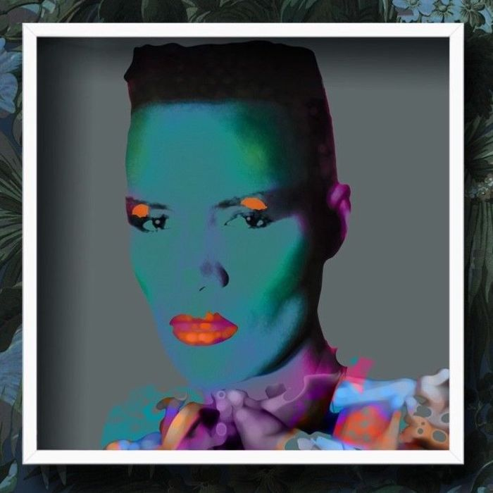 Stunning Signed  Limited Edition Giclee Print Grace Jones - Pop art - With Certificate Of Authenticy - Nr 6 / 70