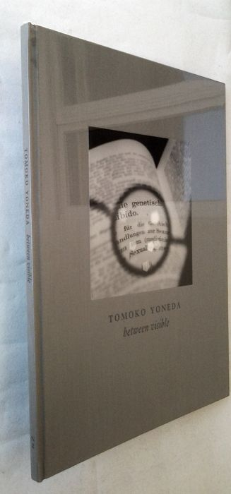 Tomoko Yoneda -  Between Visible - 2004