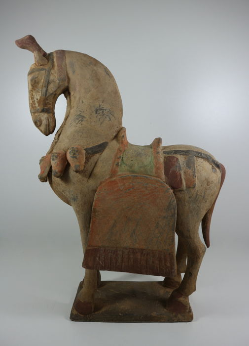 Large Terracotta horse, Tang style - China - 21st century (43 cm)