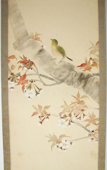 A hand painted scroll of a bird and cherry blossom by Yawata Hakuhan 白帆  - Japan - circa 1950