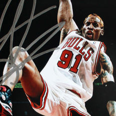 Dennis Rodman - Signed - Picture with Chicago Bulls - COA Beckett