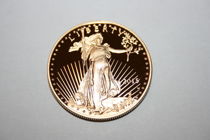 United States - 50 Dollar 2015 American Eagle in Mint Box (West Point) - 1 oz - Gold