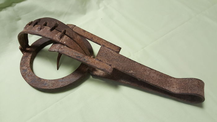 Wolf or fox trap - With strong forged spring