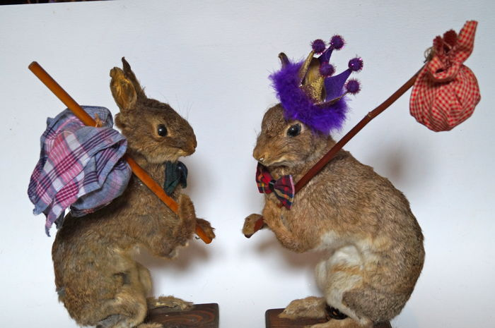 Taxidermy Rabbits, with Knapsacks - Oryctolagus cuniculus - 50 x 30 cm  - 2