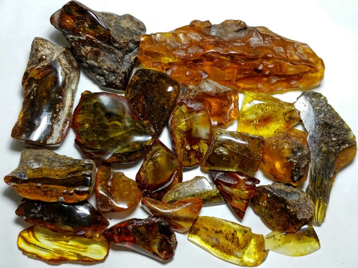 Amber (fossilized resin) Semi-polished - 2.5-10.5 cm - 203 g