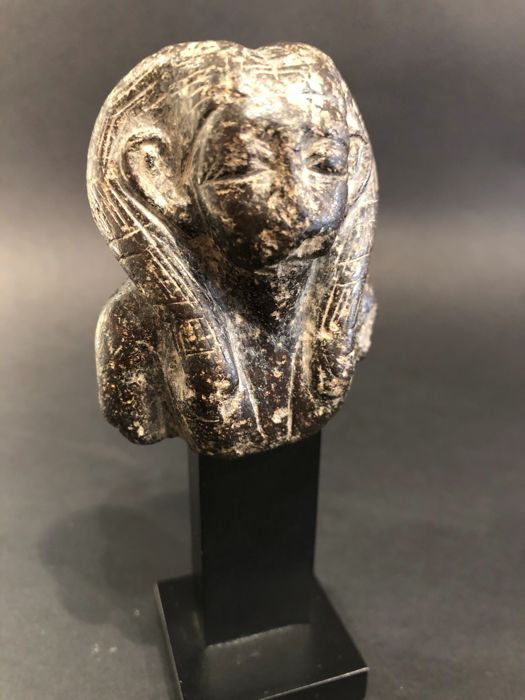 Ancient Egyptian Stone head (diorite?) Of a Queen of the Middle Kingdom. - 6×5 cm
