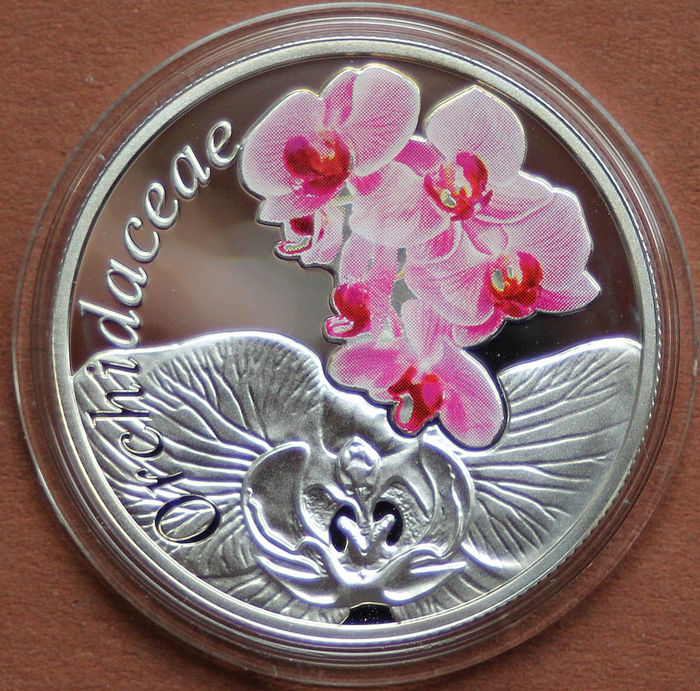 Wit-Rusland - 10 Rubel 10 Ruble 2013 The Beauty of Flowers - Orchidaceae - Zilver