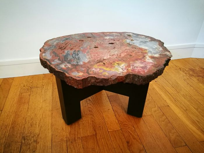 Ado Chale - sofa table, sofa end in petrified sequoia from Arizona