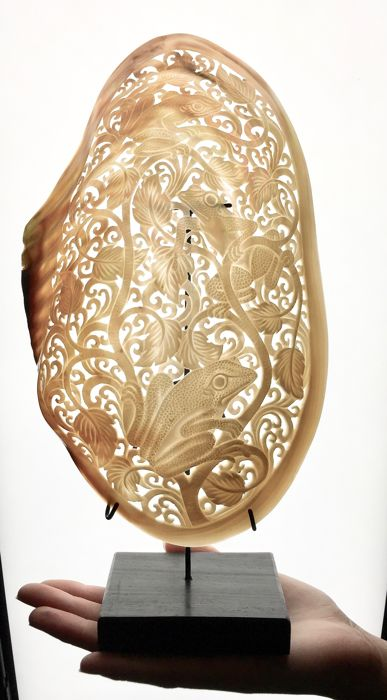 Mother of Pearl engraved Shell - Pelecypoda mollusca - 31 x 16cm