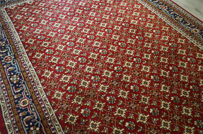 Hand Knotted India Mool Carpet 250 x 370 Cm.