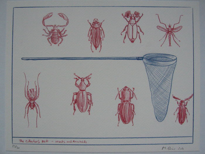 Mark Dion (1961) - The Collector's Net - Insects and Arachnids