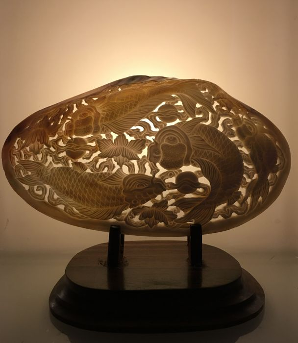 Large engraved mother of pearl shell - Bali, Indonesia - 21st century