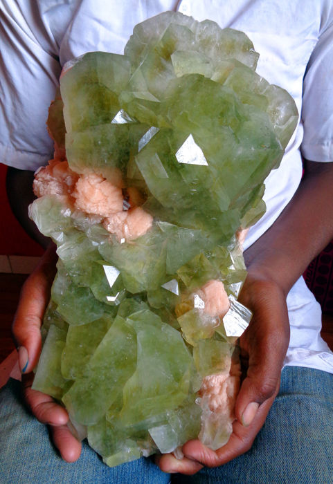 Apophyllite Crystal on matrix - 30 x 16 cm -  6500 g