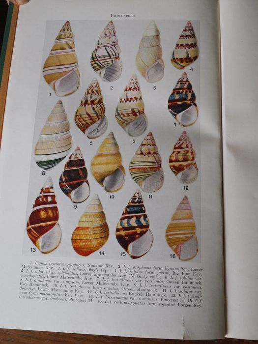 Henry A. Pilsbry - Land Mollusca of North America (North of Mexico). - 1939/1948