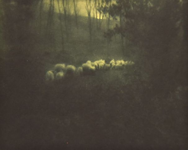 Edward Steichen (1879-1973)  - Pastoral - Moonlight