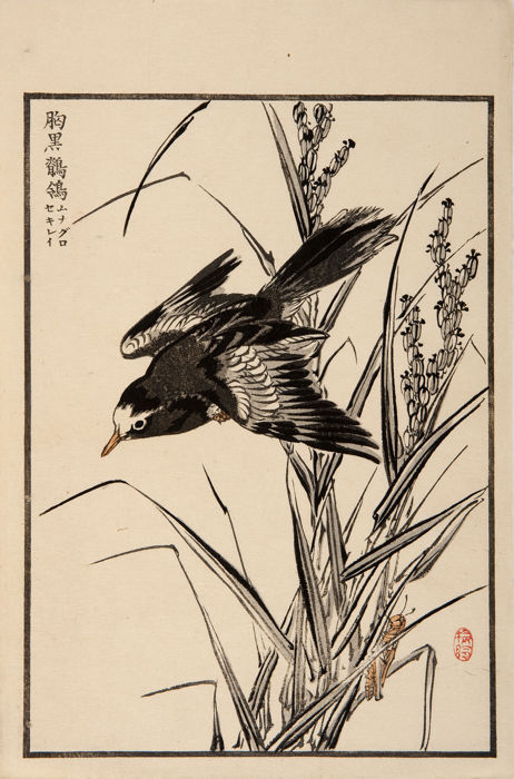 Original woodcut print by Kono Bairei (1844-95) - 'Wagtail with black stem