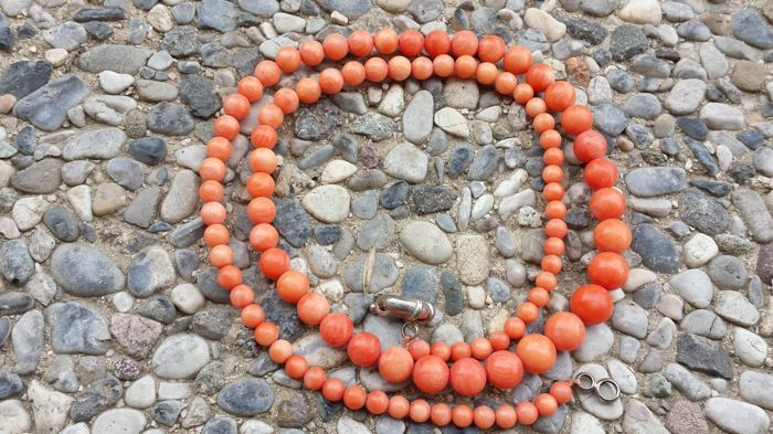 Elegant necklace in natural salmon pink coral, 1950s