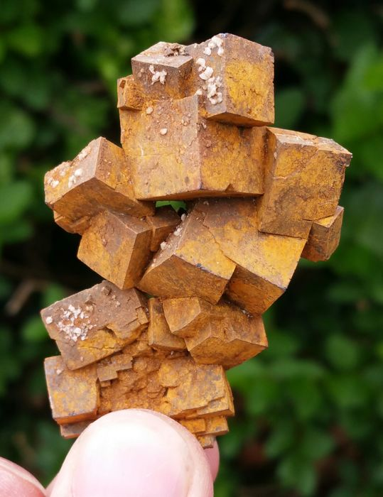Limonite A Mineraloid Crystal Cluster