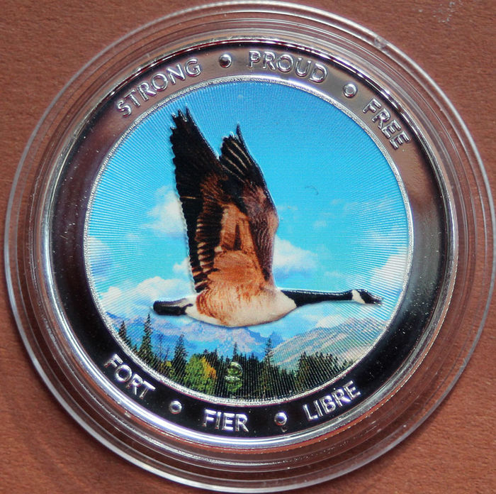 "Canada - 5 Dollar 2017 - 150 years "" Canadian Confederation "" Motiv: Goose - Colorized - 1 Oz  - Zilver"