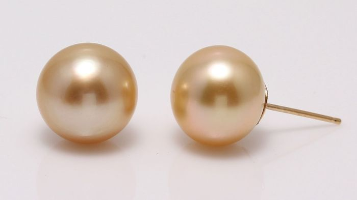 No reserve price - 18 kt. Yellow Gold - 10x11mm Deep Golden South Sea Pearls - Earrings