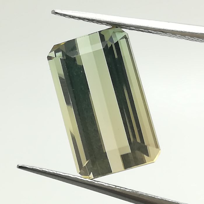 Bicolour tourmaline - 5.37 ct